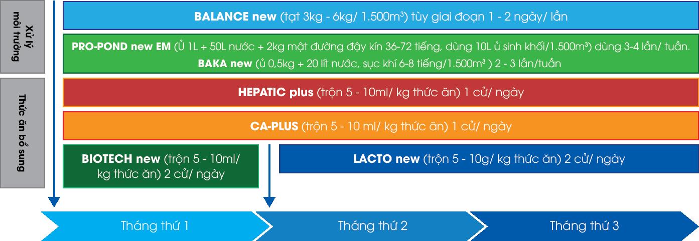 Quy trình vi sinh áp dụng cho nuôi giai đoạn 1 và 2