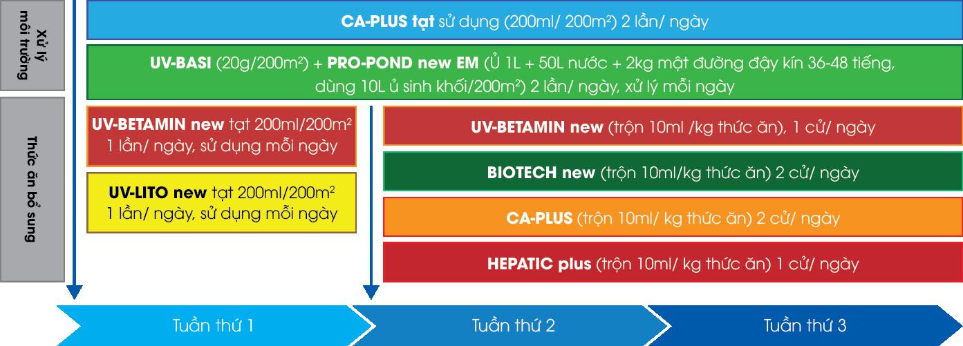 quy trình vi sinh áp dụng cho giai đoạn vèo